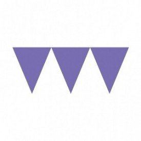 Banderines Triangulos Color Morado (4,5 m aprox)